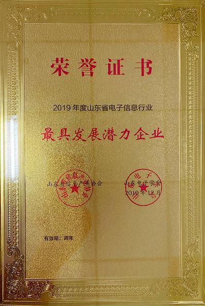 山东省电子信息行业最具发展潜力企业