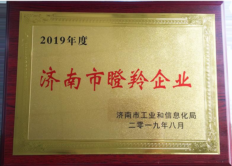 济南市瞪羚企业